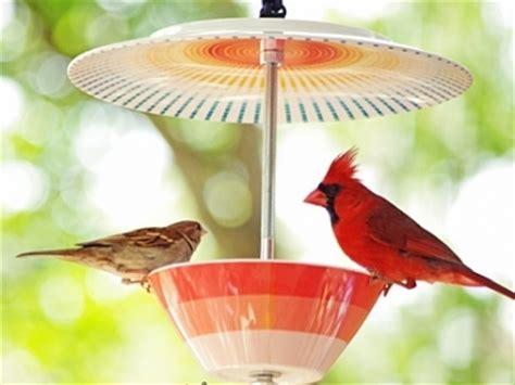 12 beautiful diy bird feeders lifestyle
