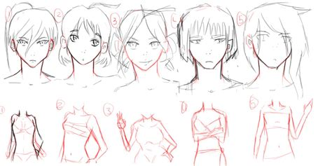 Female Body And Head Outline/anime By Thenerdygirl101 On