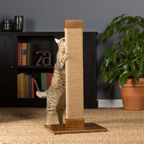 Prevue Pet Products Kitty Power Paws Tall Flat Post - Cat ...