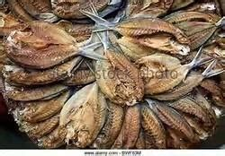 jk sea food agency kanyakumari wholesale supplier