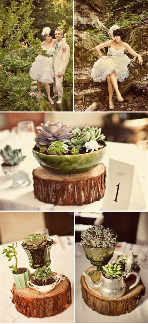 25 Best Images About Wood And Succulents On Pinterest. Shirt Rings. Wedding Invite Wedding Rings. Jenna Dewan's Wedding Rings. 14k Green Gold Engagement Rings. Big Fat Wedding Rings. Promise Ring Rings. Forged Wedding Rings. Evening Star Engagement Rings