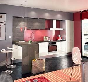 cuisine rouge et grise un style contemporain et urbain With attractive plan de maison moderne 10 deco salon et cuisine ouverte