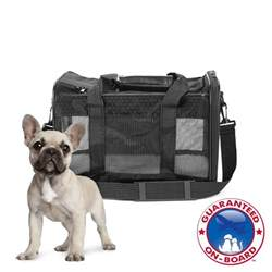petco cat carrier sherpa to go pet carrier petco