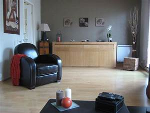 Couleur De Meuble Tendance : couleur salon salle a manger 21562 ~ Teatrodelosmanantiales.com Idées de Décoration