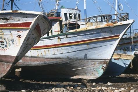 Fishing Boat For Sale Egypt by Egypt Abu Qir Fishing Boats On Stony Beach Close Up