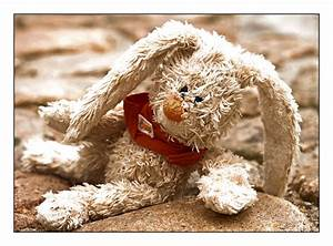 Weißt Du Eigentlich Wie Lieb Ich Dich Hab Bis Zum Mond Und Wieder Zurück : wei t du eigentlich wie lieb ich dich hab bild foto von steffiboukhari fotografie aus ~ Yasmunasinghe.com Haus und Dekorationen