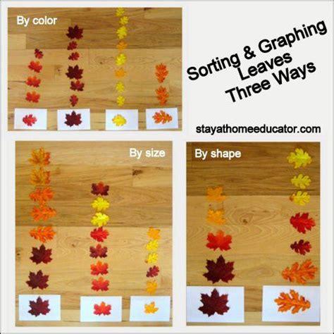 344 best fall preschool ideas images on 449 | fa98b01872845c26cec77199f60a0456 themes for preschool fall preschool