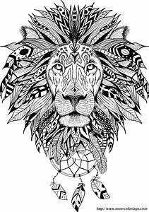 Coloriage De Pour Adultes Dessin Un Lion Magnifique Et Sa