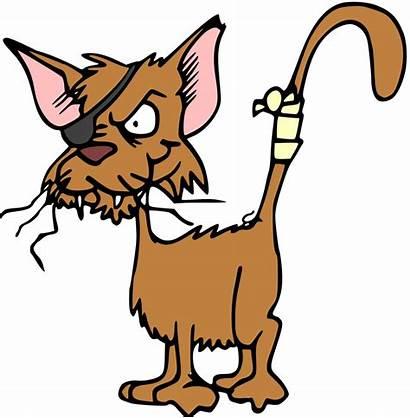Cat Cartoon Illustration Publicdomainfiles Clip Domain Copyright