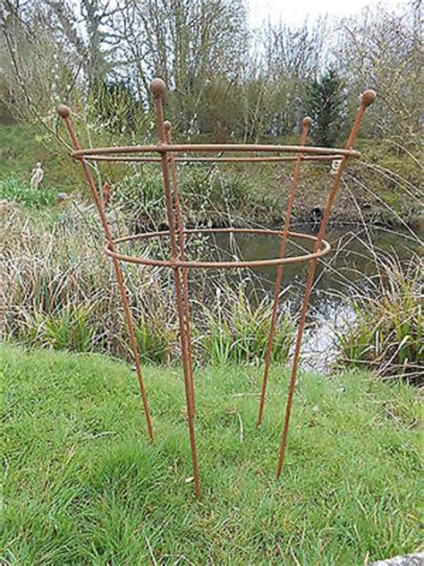 Rusty Metal Garden Plant Support Herbaceous