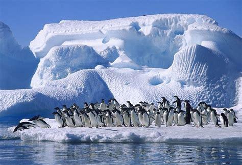 Antarktida - kontinenti i pinguinëve, asteroidëve dhe i ...