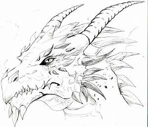 1000+ images about Dragons on Pinterest | Dragon sketch ...