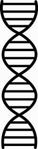 DNA Design - Free Clip Art