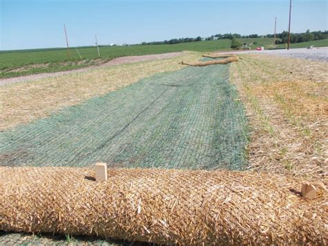 straw matting for grass seeding permanent turf reinforcement matting miller seed company