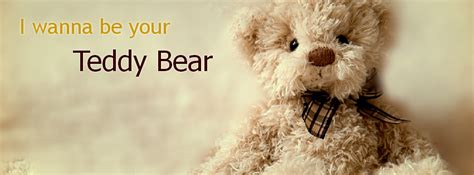 teddy bear  facebook cover photo weneedfun
