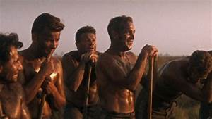 Passion for Movies: Cool Hand Luke - Ageless, Allegorical ...
