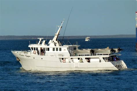 Commercial Fishing Boats For Sale Tasmania by Boats For Sale Australia Boats For Sale Used Boat Sales