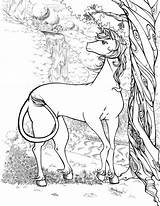Rocks Licorne Unicorns Archziner Tutorials Imwithphil Adultes Unicorno Bestr Disegni Artykuł sketch template