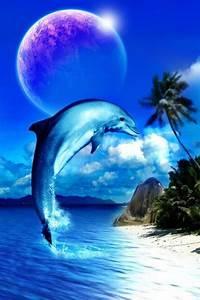 Schöne Delfin Bilder : pin von frank schlitt auf spiritualit t wale wale und delfine und delfine bilder ~ Frokenaadalensverden.com Haus und Dekorationen