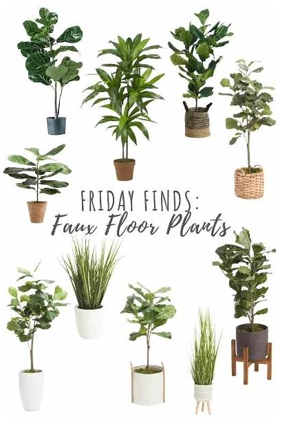 Plants Faux Floor Finds Friday Roundup Greenery