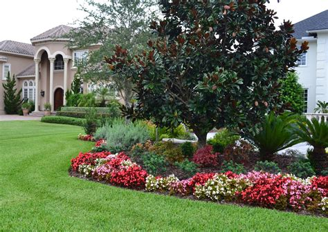 small flower bed trees landscaping idea begonia flower bed gives great contrast with the beautiful magnolia tree