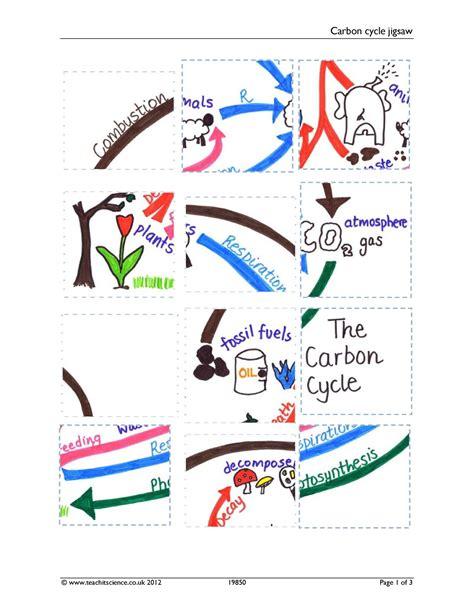 Carbon Cycle Jigsaw