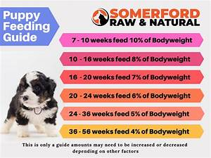 Somerford Raw Natural Baby Puppy Food Hunter Valley