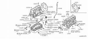 Nissan Axxess Engine Crankshaft Seal  Rear