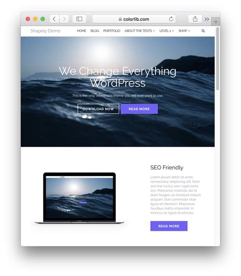 Shapely Theme How To Make An Portfolio And Easy