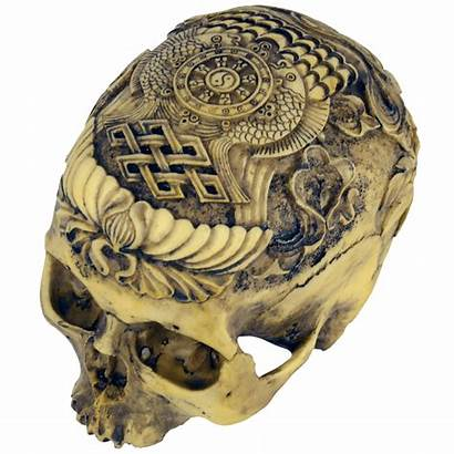 Skull Human Carved Artistic Head Medieval Statues