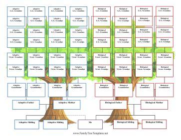 Family Tree Template Family Tree Template 5 Generations Family Tree Template 5 Generations Www Pixshark