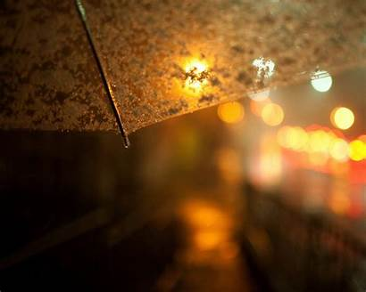 Close Summer Raindrops Desktop 10wallpaper