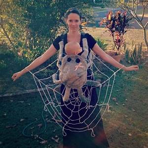 35 Ideas To Turn Your Baby Carrier Into A Great Halloween ...