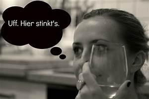 Spülmaschine Stinkt Nach Abfluss : uff hier stinkt 39 s ~ Bigdaddyawards.com Haus und Dekorationen