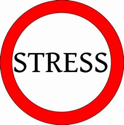 Nervensystem Vegetative Stress Biologie Das Kapitel Vegetatives