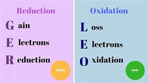 Redox Reactions  Biology