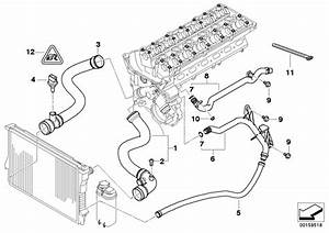 Bmw 325i Water Pipe  Cooling  Hoses  Engine