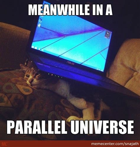Laptop Meme - laptop sits on cat by snajath meme center