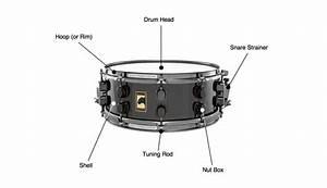 Snare Drum Parts Diagram