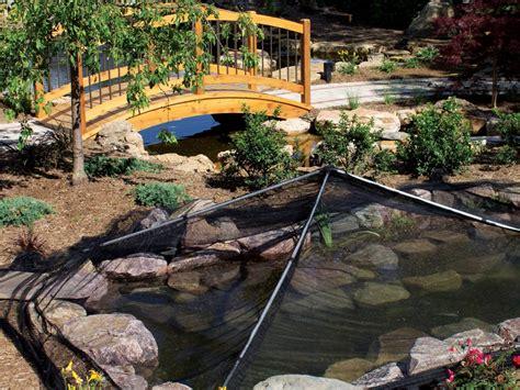 build  pond hgtv