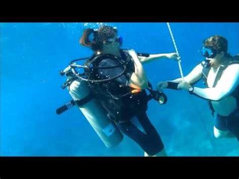tami scuba diving   time  st thomas usvi youtube