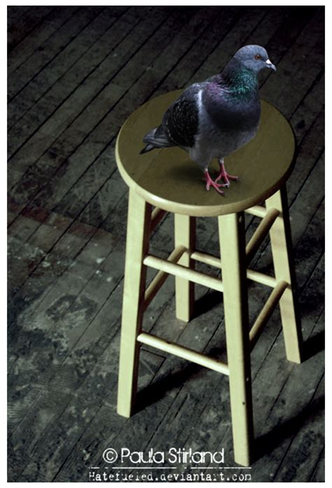 What Does Stool Pigeon - stool pigeon by hatefueled on deviantart