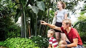Die Schönsten Gewächshäuser : gew chsh user im botanischen garten visitdenmark ~ Michelbontemps.com Haus und Dekorationen