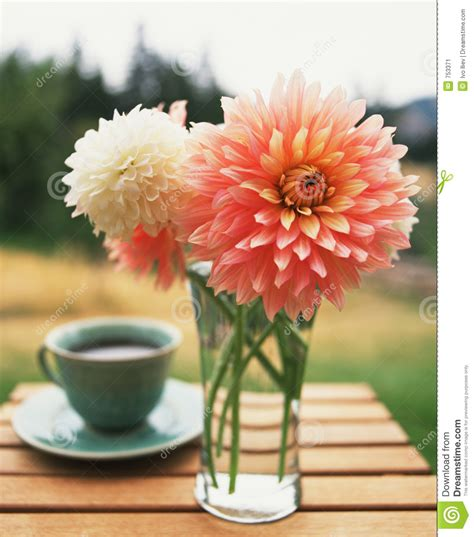 Coffee and flowers stock image. Image of flowers, glass   753371
