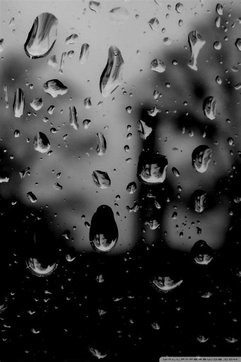 Hd Wallpaper For Mobile Rainy by Hd Wallpapers For Android Mobile Screen 1080p