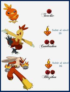 120 Torchic Evoluciones by Maxconnery on DeviantArt
