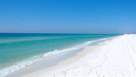Dolphin Backgrounds For Computer Florida Beach Desktop Wallpaper Wallpapersafari