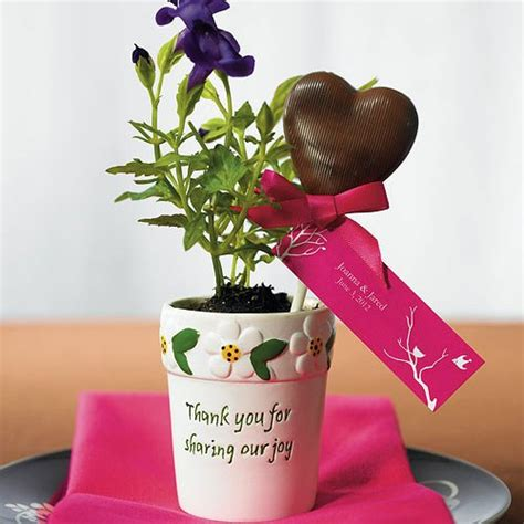 mini flower garden plant pots favors  knot shop