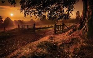Nature, Landscapes, Roads, Fields, Path, Fence, Gate