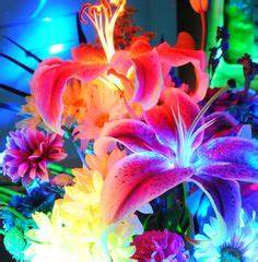 1000 ideas about Neon Flowers on Pinterest